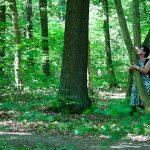 Richtig im Wald sein…